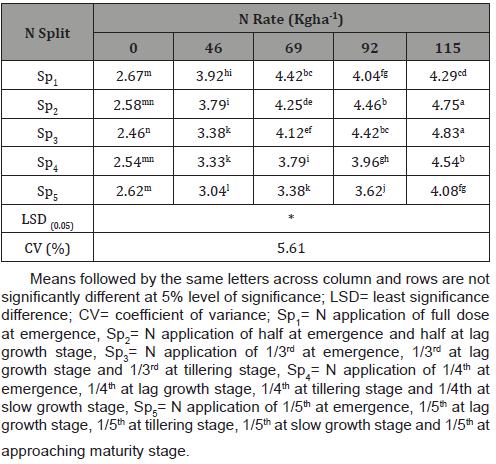 Nitrogen Fertilizer Rate and Time of Application Affected