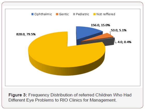 The Prevalence of Eye and Vision Problems among Rural